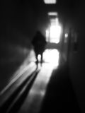 Vertical black and white man in office corridor bokeh background Stock Photo