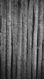 Vertical Board Fence Pattern Royalty Free Stock Image