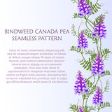 Vertical border seamless pattern wildflowers bindweed bird vetch canada pea. For banners. Vector illustration Royalty Free Stock Photo