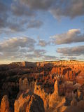 Vertical Bryce. Vertical shot of bryce canyon Stock Photo