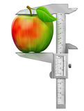 Vertical caliper measures apple fruit Stock Images
