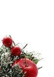 Vertical Christmas apples Stock Images