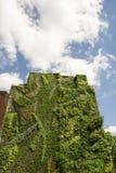Vertical ściany ogród w Madryt, Hiszpania Obrazy Royalty Free