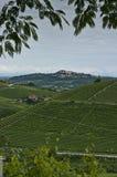 Vertical: Ciudad y viñedos en Piedmont, Italia Imágenes de archivo libres de regalías