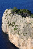 Vertical cliff on the sea royalty free stock photo