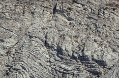Vertical cliff wall Stock Images