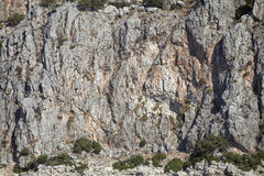 Vertical cliff wall Stock Photography