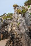 Vertical close-up of Karstic rocks with vegetation. In Berellin, Prellezo, Cantabria, Spain stock photography