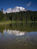 Vertical Composition Mt. Rainier Mirrored Reflction Lake Cascade Stock Image