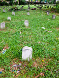 Vertical composition of tombs on the grass. A row of tombstones on the grass Stock Photos