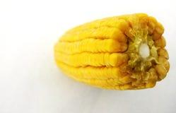 Vertical da grão do milho da espiga de milho foto de stock