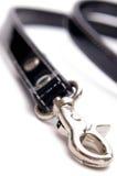 Vertical da ligação do cão Fotografia de Stock