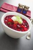 Vertical da sopa do Borscht ou das beterrabas Fotos de Stock Royalty Free