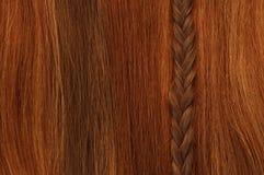 Vertical da trança do cabelo Imagens de Stock
