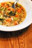 Vertical de la sopa vegetal Foto de archivo libre de regalías