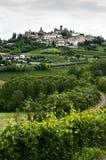Vertical de viñedos y de la ciudad en Piedmont, Italia Fotos de archivo