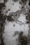 Vertical detail of of old colonial wall in Asia with with black Stock Images