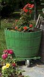 Vertical do potenciômetro de flor verde do tambor de vinho em Italy Fotografia de Stock