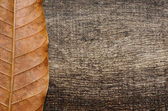 Vertical dried leaves on old wood background. Vertical brown dried leaves with an old wood background Stock Photography