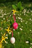 Vertical easter eggs on branchlet. With garden in background Stock Image