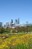 vertical för höstchicago cityscape i city Royaltyfri Foto