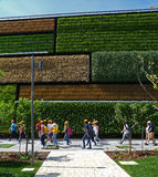 Vertical fields in Expo 2015, Milan Stock Photo