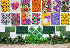 Vertical flower garden Stock Photography
