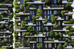 Vertical forest. Contemporary architecture in Milan, Italy