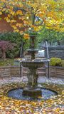 Vertical frame Beautiful tiered fountain on a garden with lush trees and plants in autumn. Golden fallen leaves surround the pool of water at the bottom of the stock images