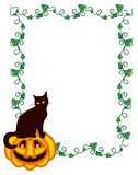 Vertical frame with a black cat sitting up on the pumpkin. Royalty Free Stock Image