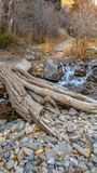 Vertical frame Bridge made of tree trunk over a rocky creek with shallow flowing water. A narrow hiking trail in the middle of forest trees can be seen in the stock photo