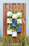 Vertical garden Stock Images
