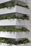 Vertical Garden Royalty Free Stock Photos