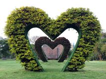 Vertical Garden in Heart Shape with White Space on Top Royalty Free Stock Image