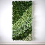 Vertical garden, interior design. 3D illustration Royalty Free Stock Photography