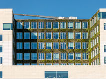 Vertical garden on modern building in Amsterdam Royalty Free Stock Image