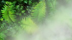 Vertical garden with tropical green leaf. Vertical garden with tropical green leaf with fog and rain stock photography
