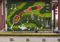 Vertical garden with wine bottle and glass at bar in Xian stock photography