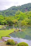 Vertical green plants, fish, lake with reflection in Japan zen g. The vertical green plants, mountain, fish, lake with reflection in Japan zen garden royalty free stock photo