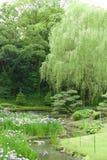 Vertical green trees, bridge, flowers in park Stock Images