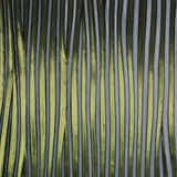 Vertical Green and White Stripe Patterned glass Stock Images