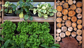 Vertical green and wood garden landscape and design Royalty Free Stock Photography