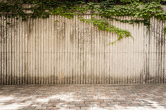 Vertical Grooves with Ivy Royalty Free Stock Photography