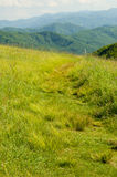 Vertical Hiking trail across a mountain top Royalty Free Stock Image