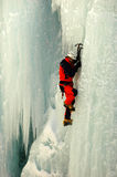 Vertical Ice Climbing. A daring ice climber works his way up the face a vertical wall of ice at the designed Ouray Ice Park in Ouray, Colorado Royalty Free Stock Photography