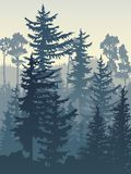 Vertical illustration of blue coniferous forest. Stock Images
