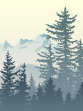 Vertical illustration of foggy forest mountains. Vertical illustration of foggy coniferous trees and mountains Royalty Free Stock Image