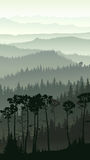 Vertical illustration of misty forest hills. Royalty Free Stock Photo