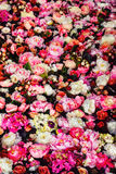 Vertical image of beautiful flowers wall background. With amazing red and white roses royalty free stock image
