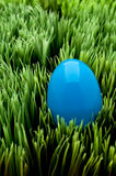 Vertical image of a blue Easter egg Stock Photo